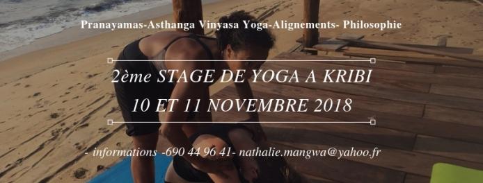 Stage 10-11 Novembre, à Kribi